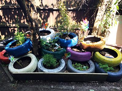 Planting Area